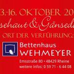 Gänsehaut und Gänsefedern am 13 Oktober 2017